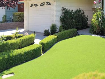 Artificial Grass Photos: Synthetic Turf Supplier Palm Springs, California Design Ideas, Front Yard Ideas