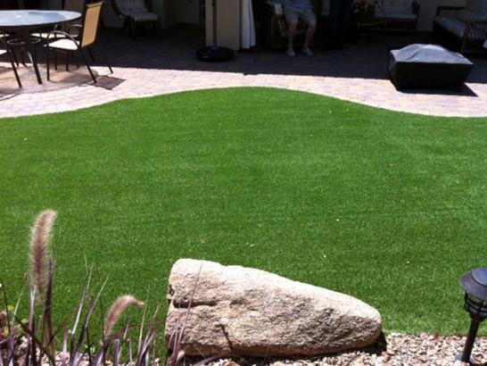 Artificial Grass Photos: Turf Grass Moreno Valley, California Dog Run, Backyard Landscaping
