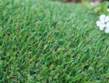Petgrass-55 Outdoor Carpet, Fake Grass