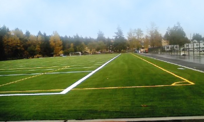 Sports Fields Synthetic Grass in Riverside County and Riverside County area